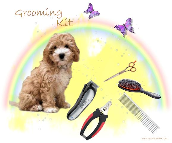 A Grooming Kit signed