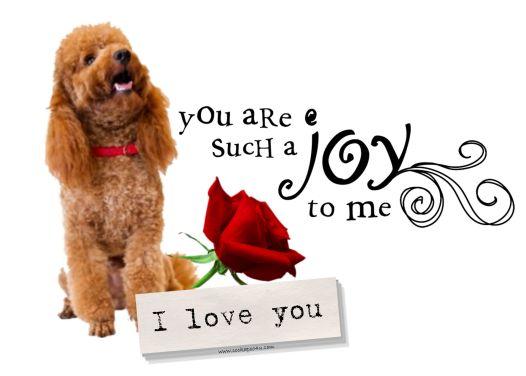 A Joy To Me I Love You Basil signed