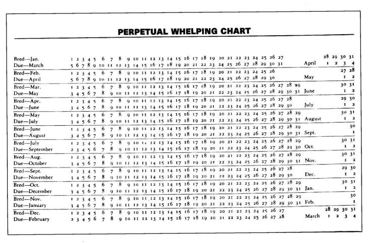 Dog-whelping-chart