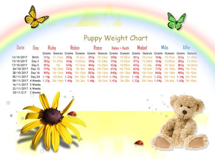 1 a weigh in week 4
