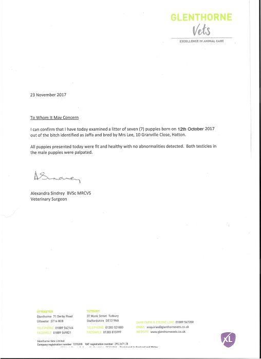Vet Check Letter