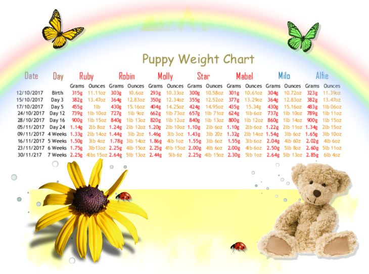 1 a weigh in week 7 Named
