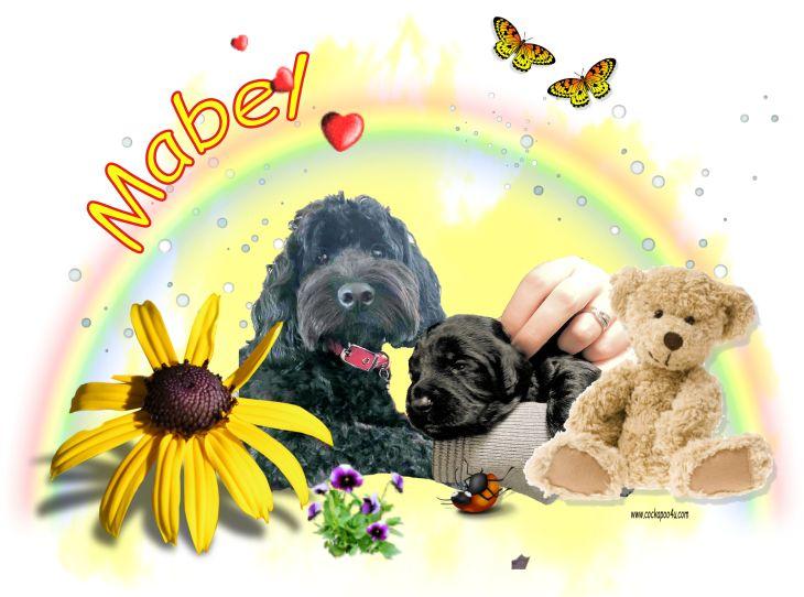 1 Mabel