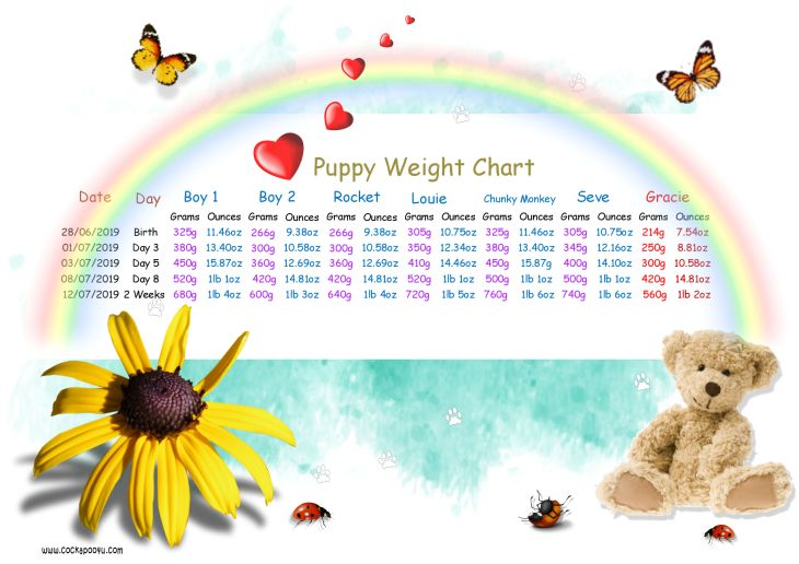 Weight Chart 2 Weeks Old