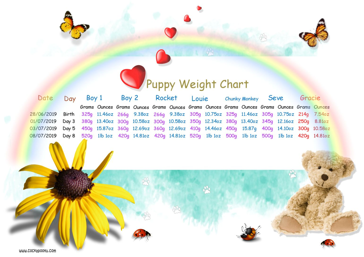 Weight Chart Day 8 aaa